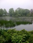 It was slightly foggy when we started our walk. Gave the pond an interesting appearance.