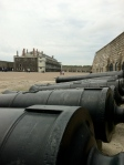 Cannons at the Citadel