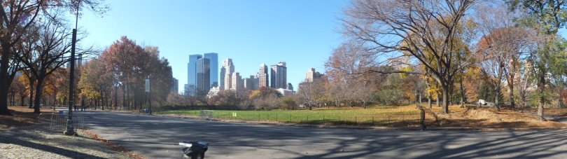 A panoramic from Central Park