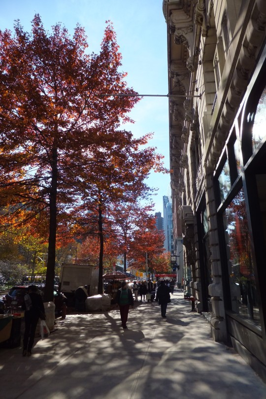Wandering Amsterdam Avenue