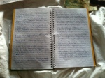 Some of my travelogue. Honestly, it's chicken scratch so it's a bit difficult to read.