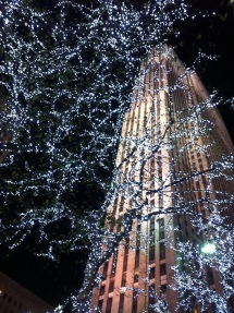 30 Rock + Christmas lights = Beautiful