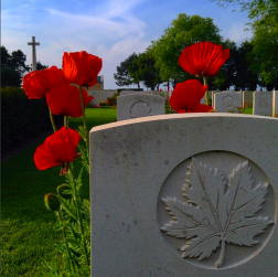 Poppies blow in the breeze at the Beny-sur-Mer Canadian War Cemetery